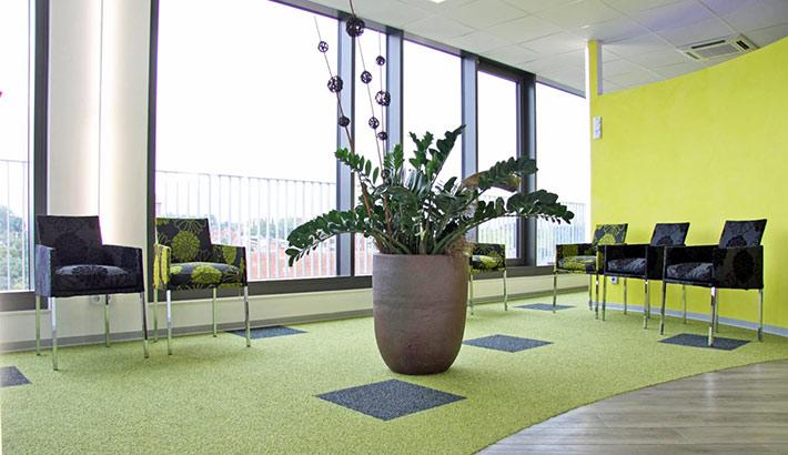 objects.sh Arztpraxis Warteraum Pflanze Wartebereich